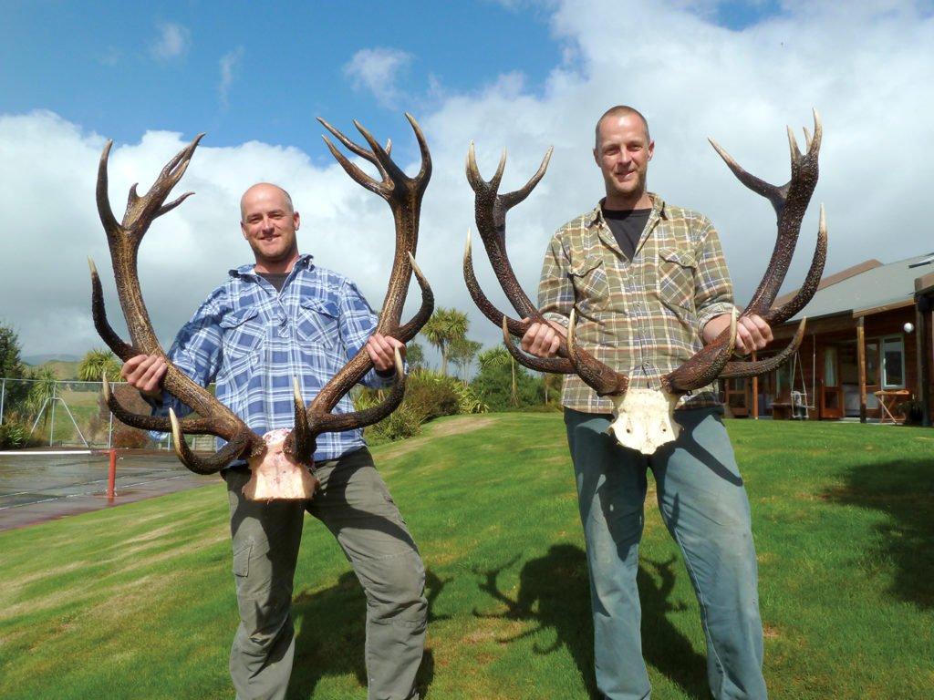 Trophies - Te Henga Hunting