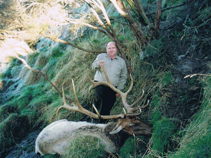 Elk Hunting New Zealand